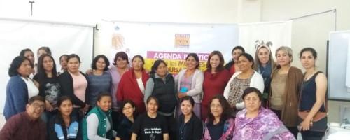 Actualización de la agenda política de las mujeres.